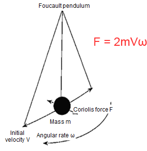 The Coriolis force is perpendicular to the direction of the reciprocating movement of the pendulum, and is maximized at the maximum speed point.